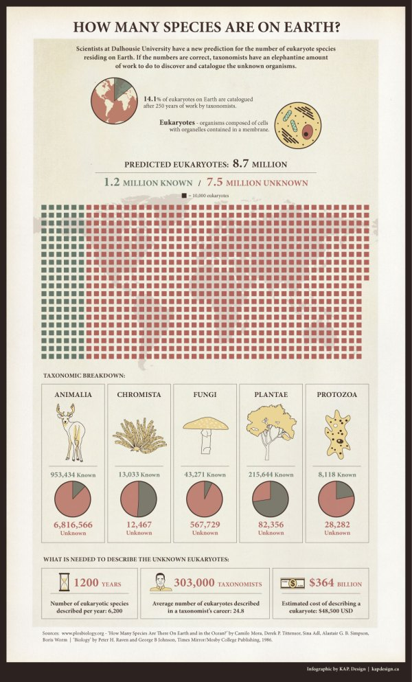 Infographic by KAP. Design