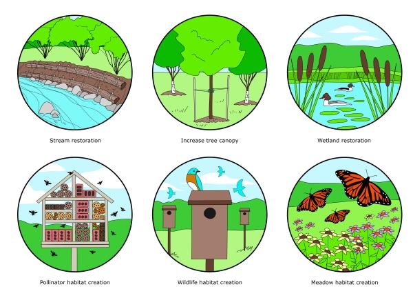 Restoration illustrations by KAP Design