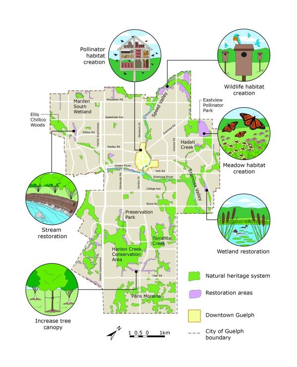 Natural heritage restoration map by KAP Design