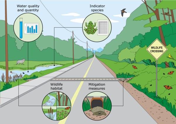 Environmental monitoring infographic by KAP Design